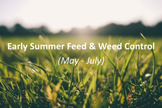 Early summer feed and weed control