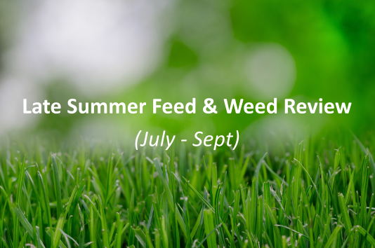 Late summer feed and weed review